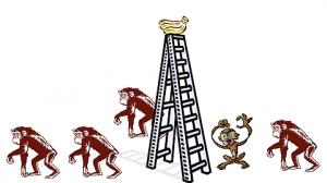 Paradigmas - Experiência com macacos